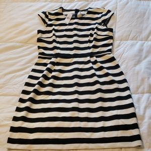 Ann Taylor Loft Dress, NWT